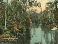 EvergladesCity-Sm